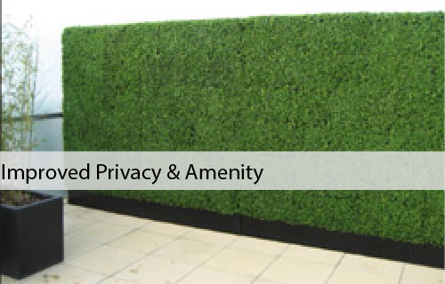 Artificial Boxwood Hedges & Bamboo Panels | Designer Plants