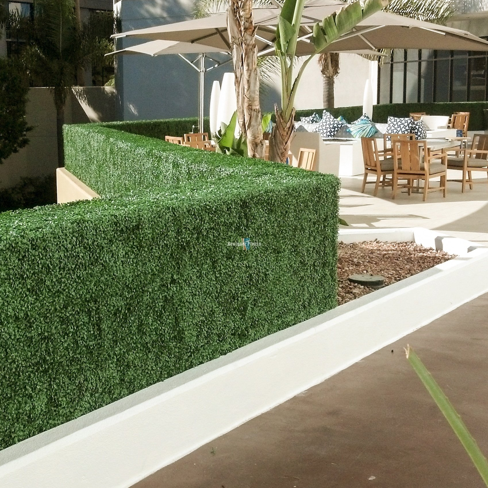 Boxwood Hedge Hotels