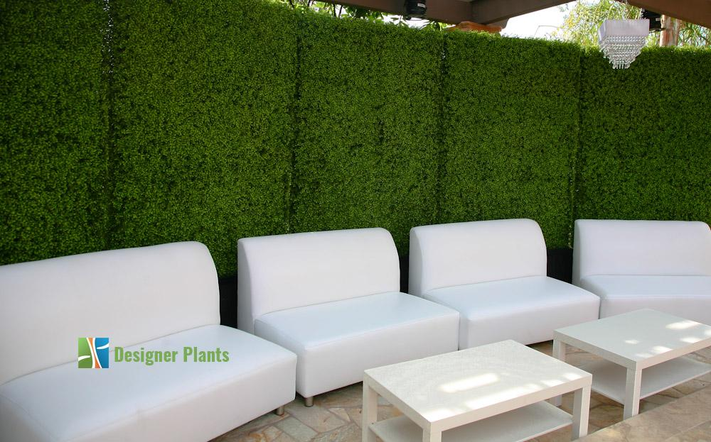 Privacy hedges for Siepe finta per terrazzo
