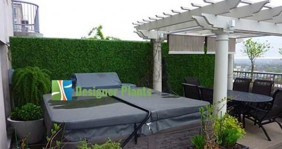 Penthouse Boxwood Hedge Screen