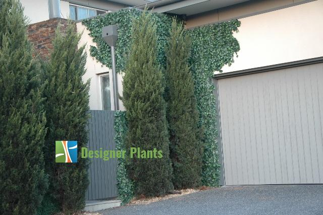 Artificial Hedges Being Installed2