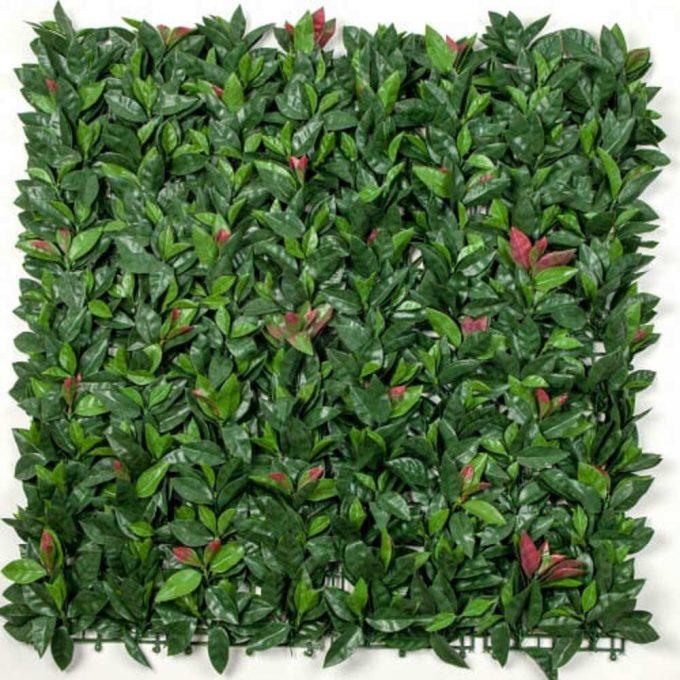 Photinia (Red Robin) Hedge Leaf Screens Panels UV Resistant 1m x 1m