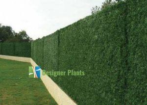 artificial hedges (artificial bi-colour wall grass)