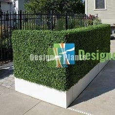 Custom made boxwood planters for covering up an ugly area