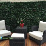 photinia leaf artificial hedges