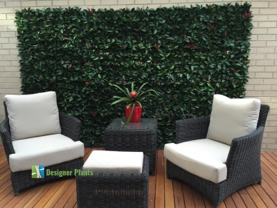 photinia leaf artificial hedges to create a stunning green wall
