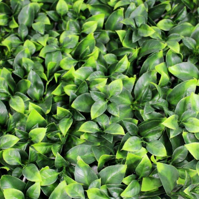 Artificial camelia jasmine hedge panel screen