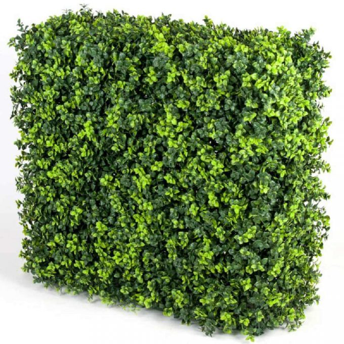 artificial elm hedge for events