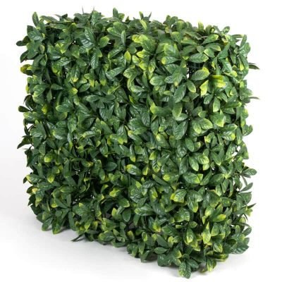 Portable laurel leaf hedge for events (1)