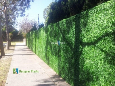 Boxwood screens applied to an external fence.