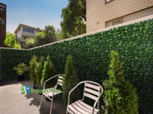 A plain brick fence in Melbourne in need of some beautification - Laurel Hedge.