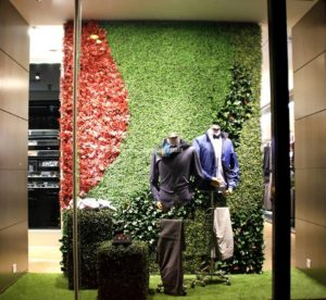 Shop display window with artificial hedges.