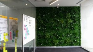 White Oasis Vertical Garden for Office Fit outs.
