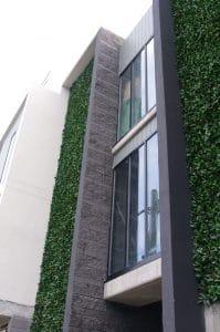 Photinia fake hedge walls panels and vertical gardens