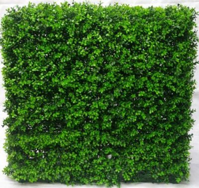 Artificial Plant-Portable Buxus Hedge UV Resistant 75cm x 75cm