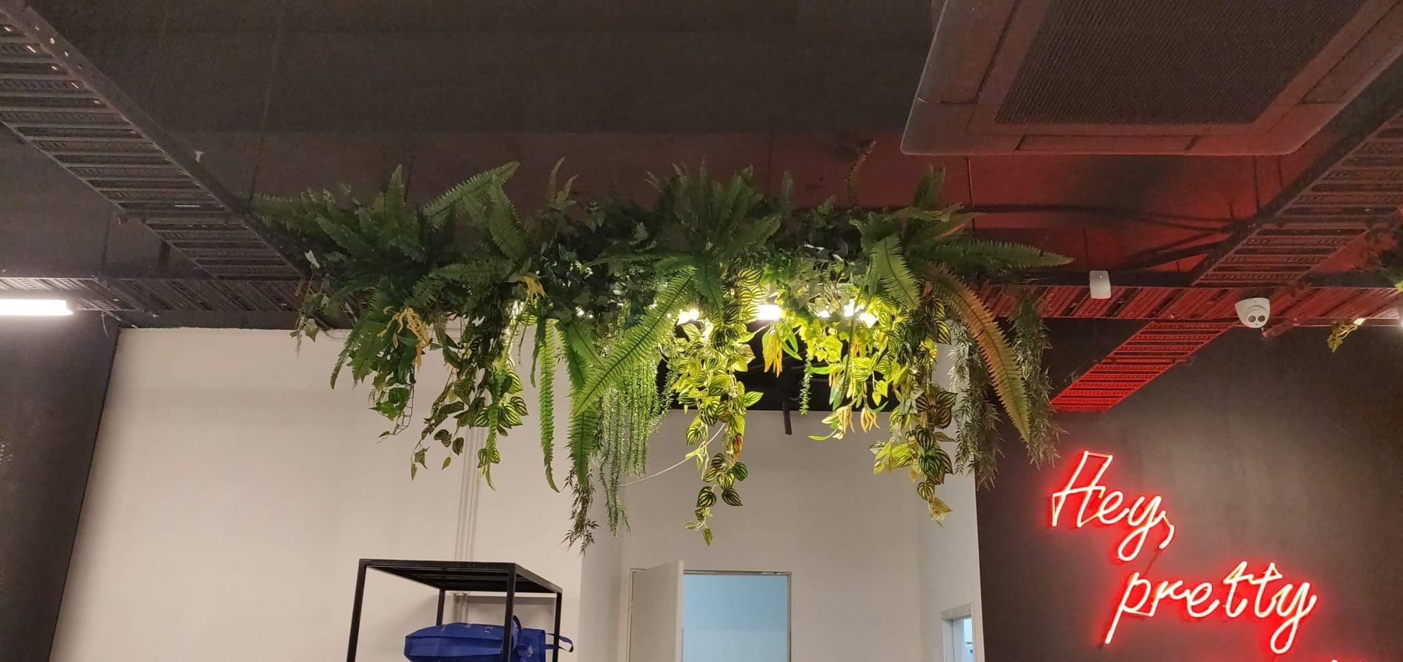 Hanging artificial plants, vines and ferns from a ceiling