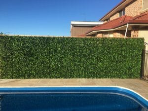 Spring sensation fake hedge wall around a pool
