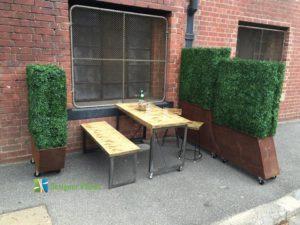 Boxwood Cafe Hedges