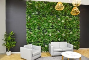 Commercial Shopping Center Plants and Wall Garden
