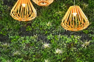 Commercial Shopping Center Plants and Wall Garden with lighting
