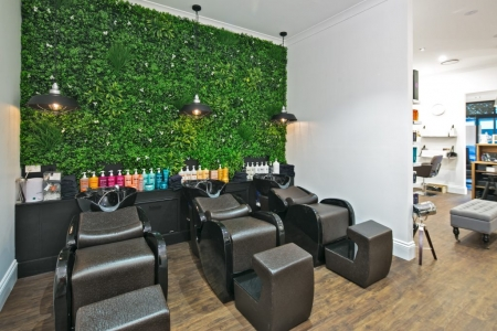 Vertical Garden Screen for Plaster Walls; hairdressing salons and beauty shops