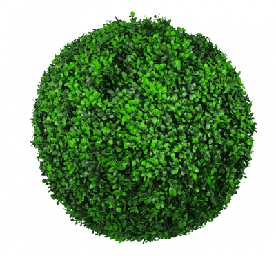 green wall disc