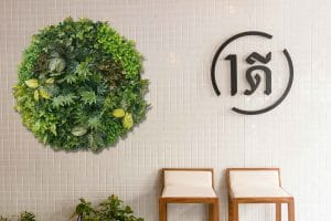 Plant disc attached to a cafe wall to add a wall decoration