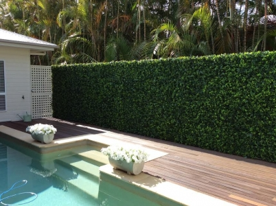 Backyard shed and pool fence covered in artificial greenery and vertical gardens