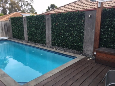 Photinia Hedge Pool Transformation with Vertical Garden Panels