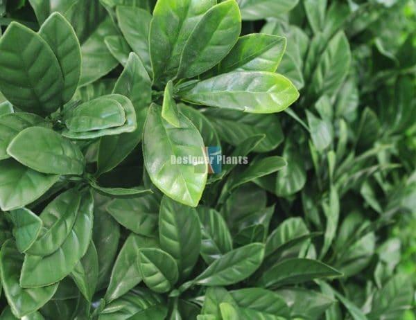 Green Laurel Artificial Vertical Garden
