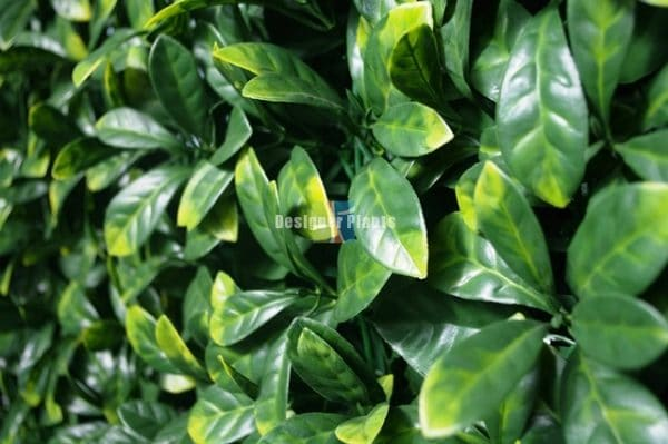 Fake Gardenia Hedge Panel