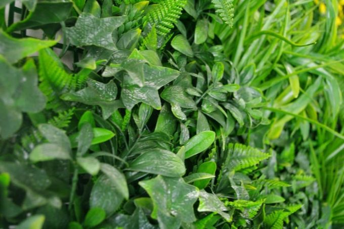 Artificial Plant-Green Tropics Vertical Garden / Green Wall UV Resistant closeup2