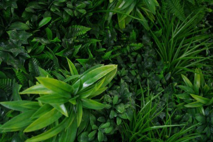 Artificial Plant-Green Tropics Vertical Garden / Green Wall UV Resistant closeup