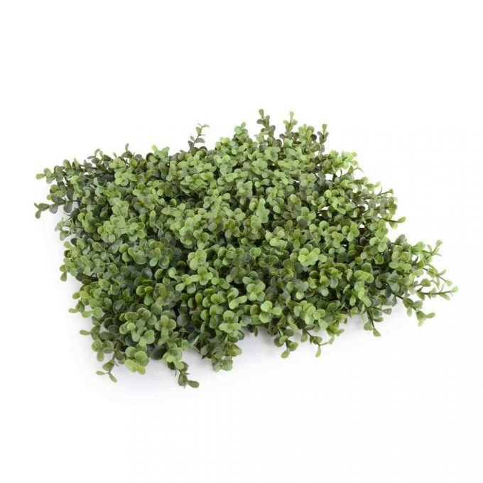 fake buxus hegde panel