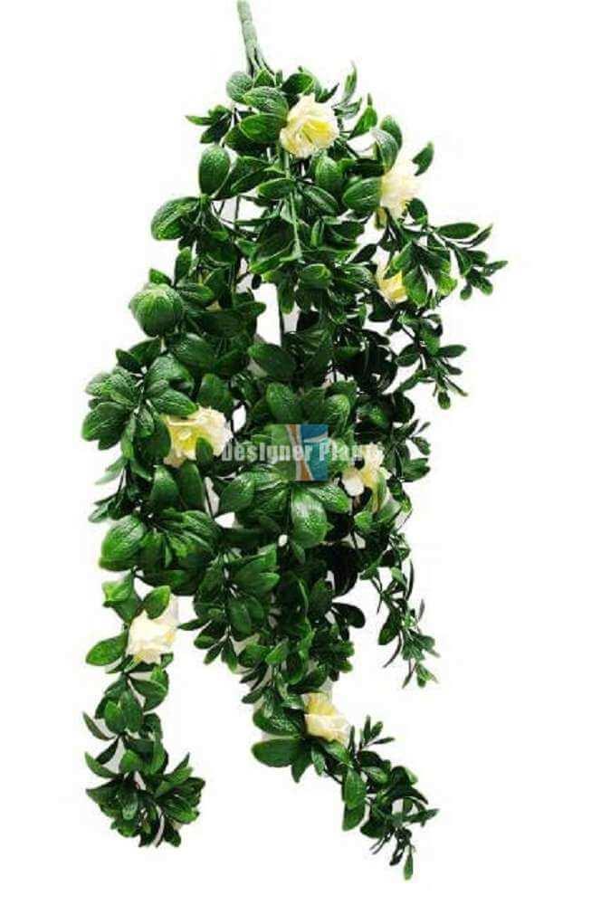 Hanging White Rose Stem