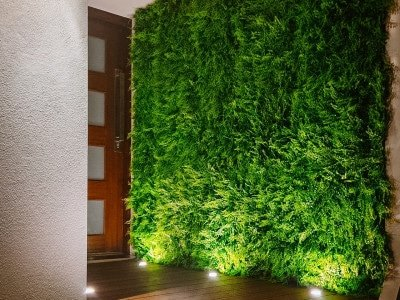 A front door entryway is decorated with a stunning green well that is lit with up-lights