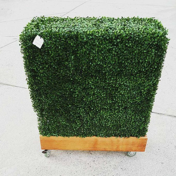 Boxwood Hedge (fake / artificial) on a timber planter