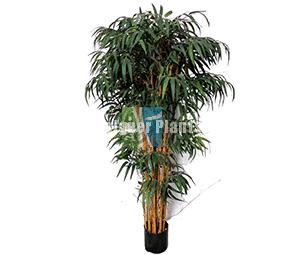 Fake Asian Bamboo Plant