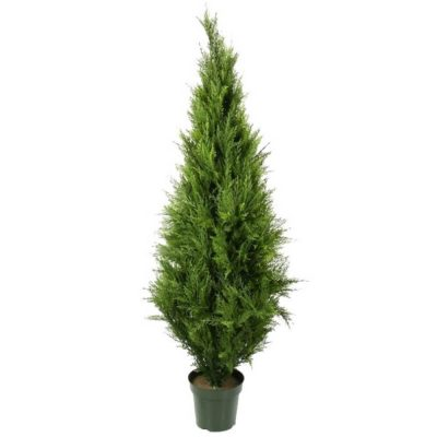 fake cypress pine tree