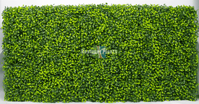 Artificial Boxwood Event Hedge