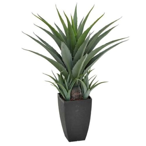 Artificial Agave in a Decorative Black Pot