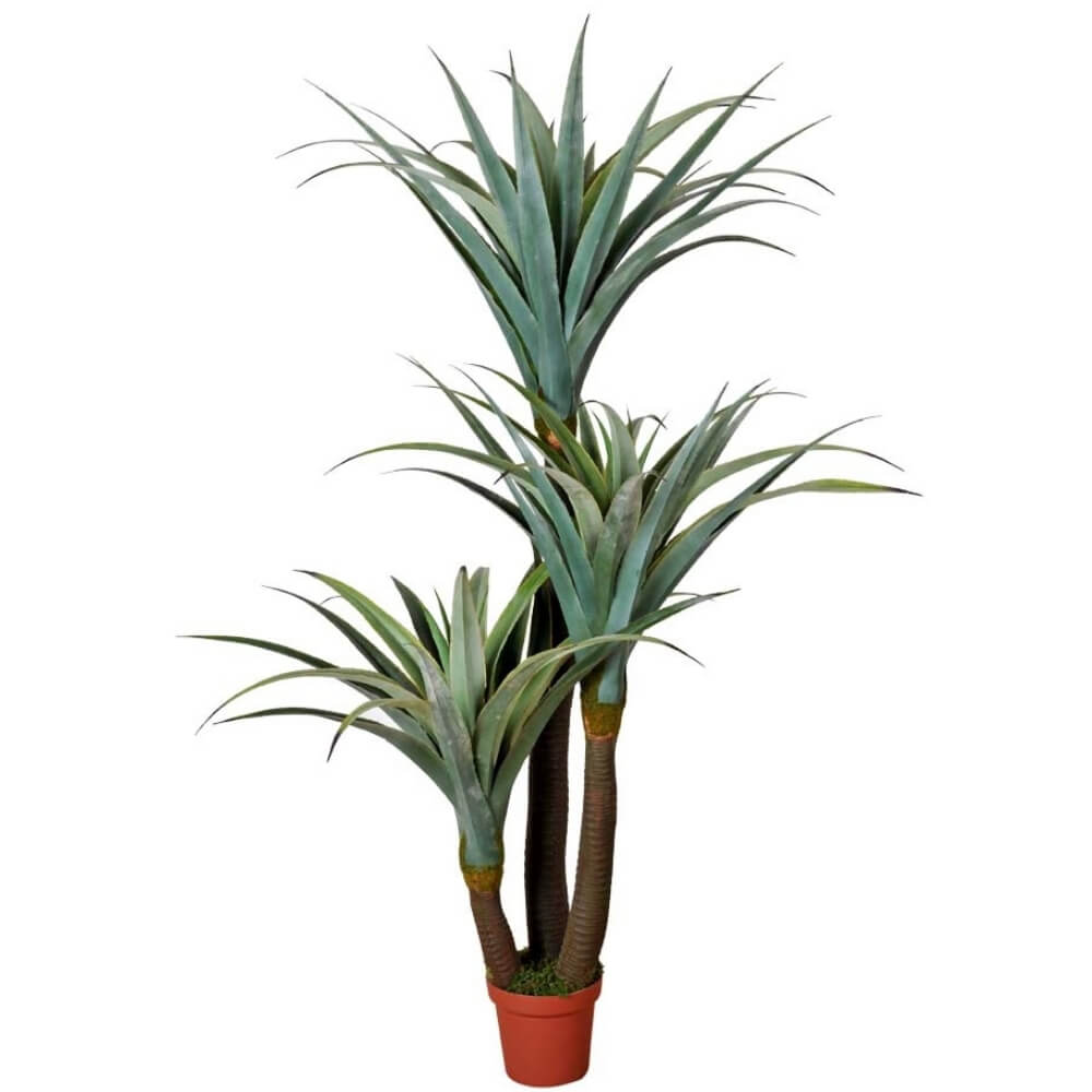 fake Dracaena with 3 spines 180cm (1)