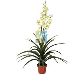 Artificial Yucca Glorisa