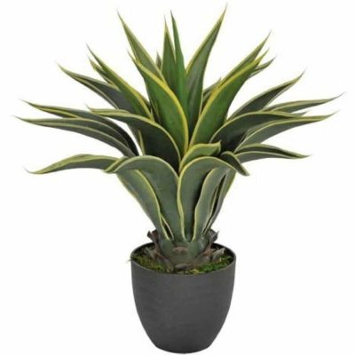 fake agave plant with yellow edges