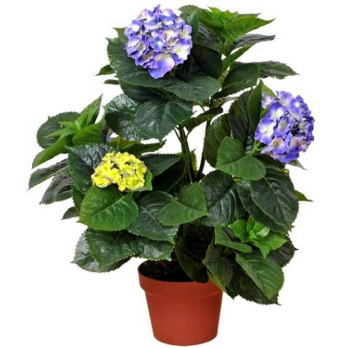 artificial flowering hydrangea plant