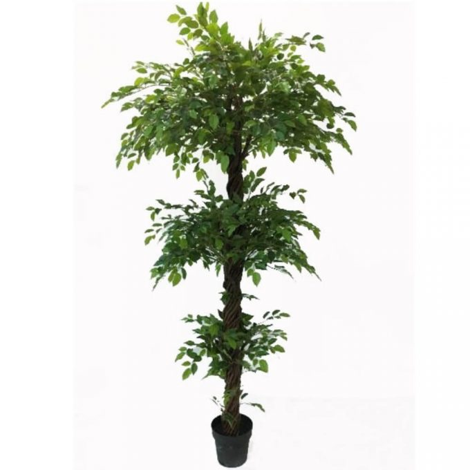 fake bushy three level ficus