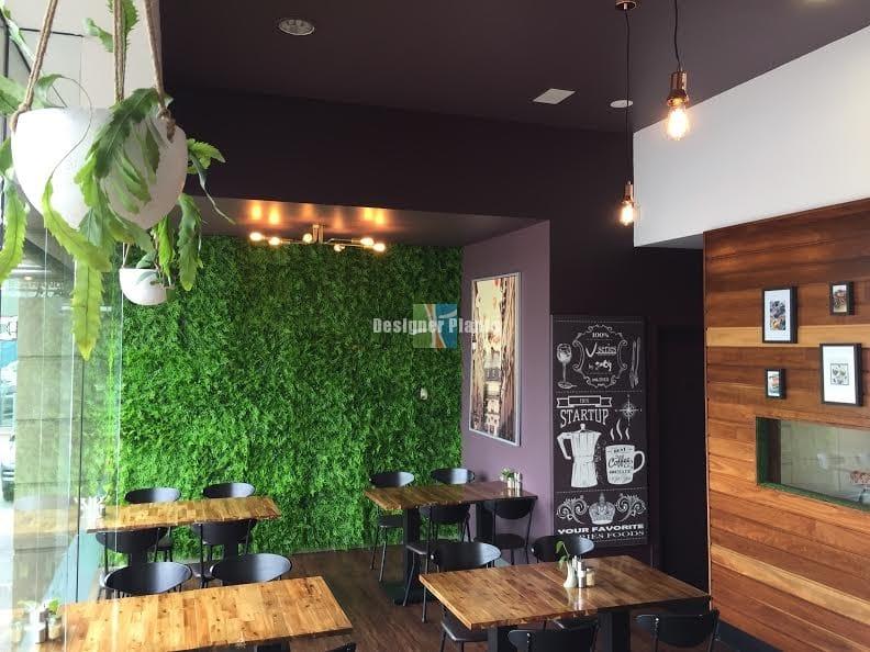 Cafe wall with denser fern vertical garden panel