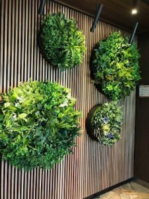 Green wall disks by Designer Plants