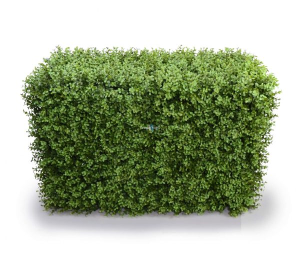 Premium buxus uv artificial hedge