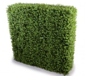 High quality and easy to assemble premium buxus hedge